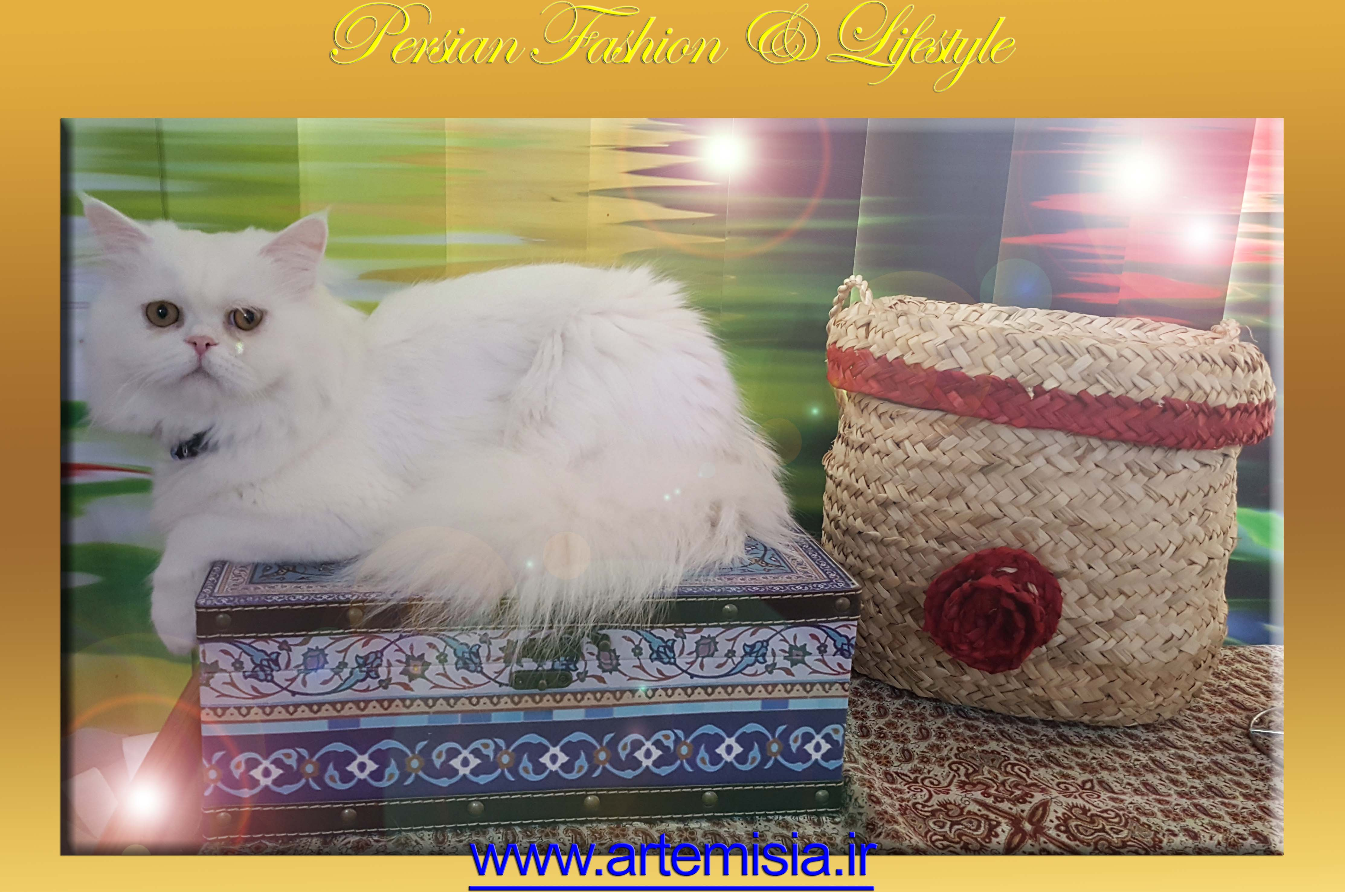 Persian White Iranian Leather Box