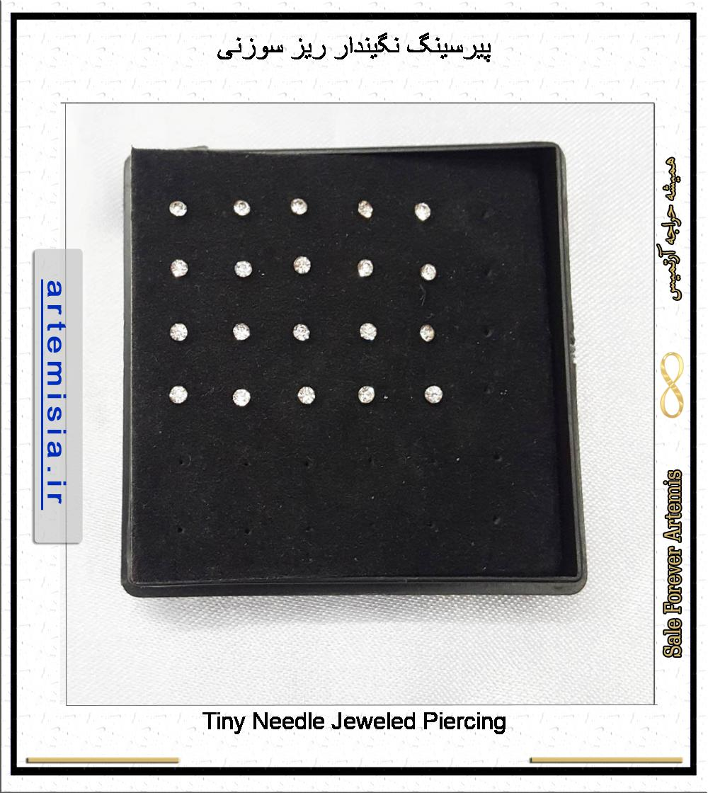 Tiny Needle Jeweled Piercing