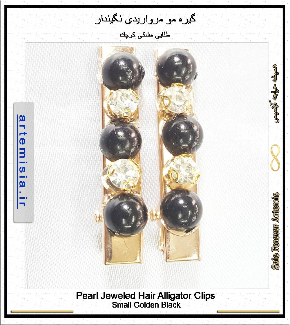 Pearl Jeweled Hair Alligator Clips